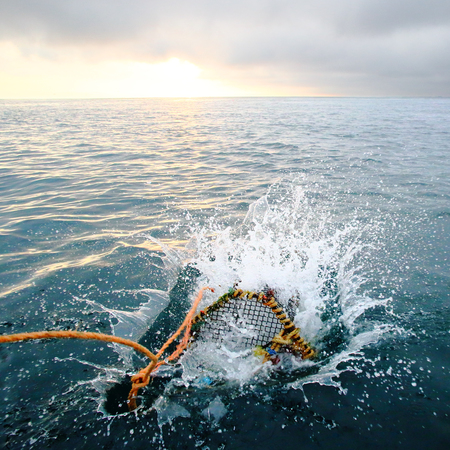 sunrise ocean: Splashing creel in the sea at dawn for fishing