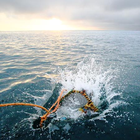Splashing creel in the sea at dawn for fishing