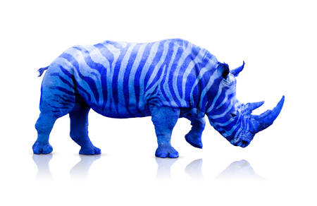 Blue rhino with zebra lines over white, clipping path