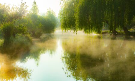 Mist on the river in the marshes of Bourges city, Centre-Val de Loire, France