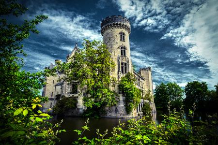 Fairytale ruin of a french castle, La Mothe Chandeniers