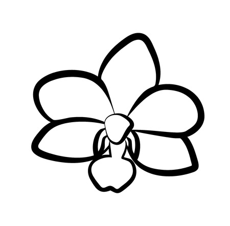 Vector illustration, isolated orchid flower in black and white colors.