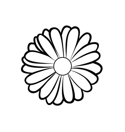 Vector illustration, isolated marigold flower in black and white colors