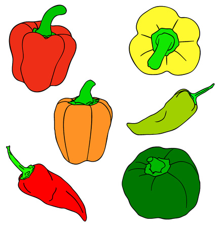 Vector illustration, set of red, green and yellow isolated peppers, outline hand painted drawing Ilustração