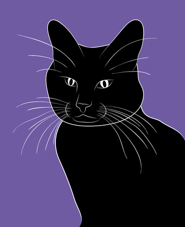 Vector illustration, beautiful domestic black cat portrait on purple background, outline hand painted drawing