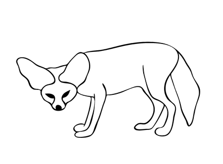 Vector illustration, isolated fennec fox in black and white colors, outline hand painted drawing Illusztráció