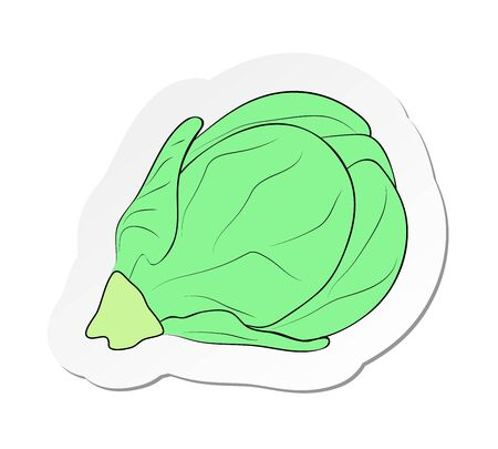 Vector illustration, sticker of branch of Brussels sprout in flat cartoon style isolated on white background