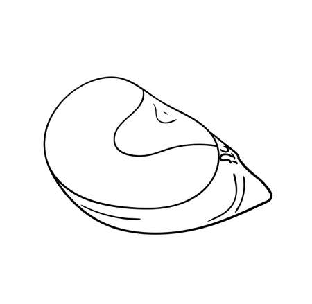 Vector illustration, isolated slice of an apple fruit in black and white colors, outline original hand painted drawing Vectores