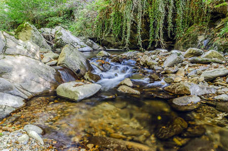 navarra: Beautiful picture at the river, with great details and high resolution. Te picture is takken in Navarras forest, Spain.  Stock Photo