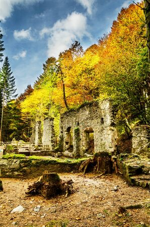 forgotten: Picture at the ruins inside the forest, from one long time ago forgotten factory. One image with great colors and details witch can be used in many ways. The photography is takken high in the Navarras mountain in Spain. Stock Photo