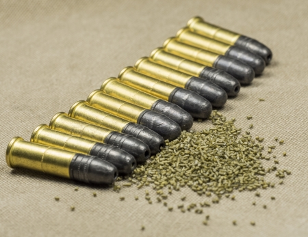 caliber:  22 caliber Long rifle Rimfire Ammunition with smokeless powder on canwas Stock Photo