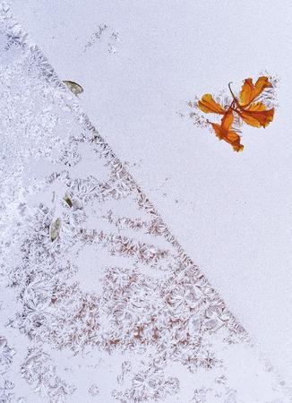 haiku: winter motiv on the glass