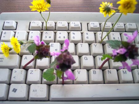 keyboard and flowers photo
