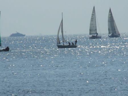 yacht race: regata  Foto de archivo
