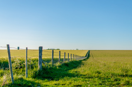 perspectiva lineal: Linear Perspective of a fence running through beautiful farmland in summer