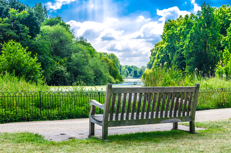 st jamess: Wooden bench at St Jamess Park, London,  in the English summer - June