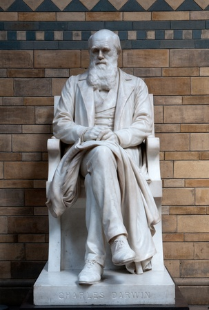 the fittest: Charles Darwin Statue Stock Photo
