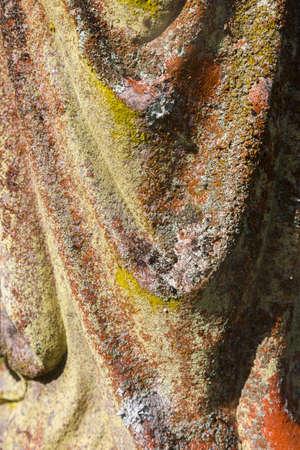 Fungus on a rippled rock form basking in beautiful sun light.