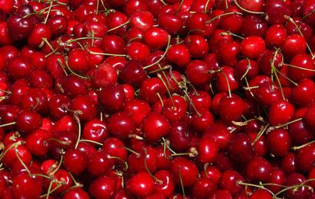 ripe: Ripe Cherries