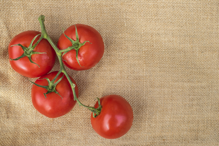 Fresh ripe healthy Vine Tomatoes on a hessian material