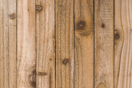 Rustic textured wooden strips showing the knots and grain of the wood for use as a background Reklamní fotografie