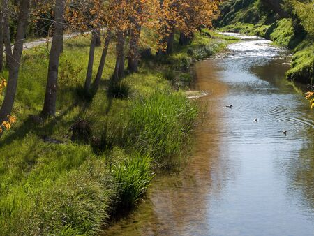 A river flowing with some trees on the riverbank Stock Photo