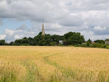 A view across the countryside with fields and trees Stock Photo - 3656499