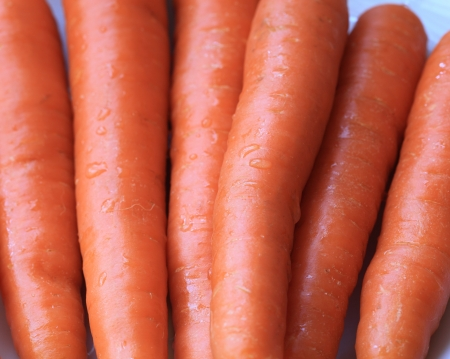 umyty: surowe marchewki przemyto