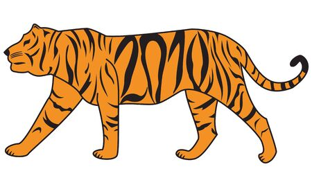 Tiger - symbol of the 2010 year. Rasterized vector image. photo