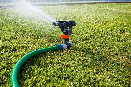 garden hose: Lawn sprinkler spraying water on the grass Stock Photo