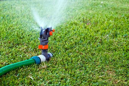 Lawn sprinkler spraying water on the grass Stock Photo - 6364029
