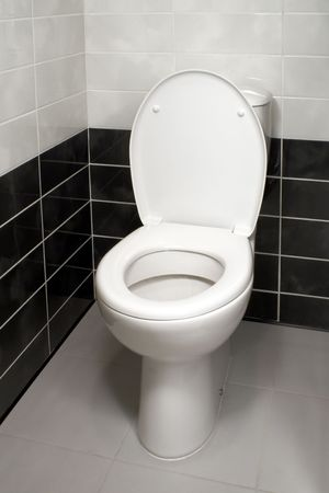 Inodoro blanco con funda de asiento de inodoro abierto  Foto de archivo - 6729484