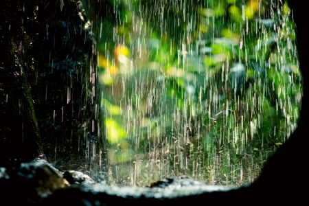Rain drops in sunlight, natural background Stock Photo - 9321432