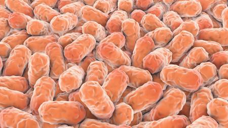 protozoa: Many single-celled orange microbes