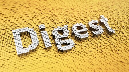 digest: Pixelated word Digest made from cubes, mosaic pattern Stock Photo