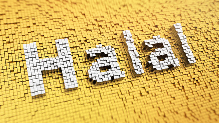 permissible: Pixelated word Halal made from cubes, mosaic pattern Stock Photo