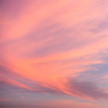 skyscape: Colorful skyscape in sunset light, natural background
