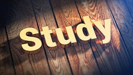 e survey: E-learning and webinars. The word Study is lined with gold letters on wooden planks. 3D illustration jpeg