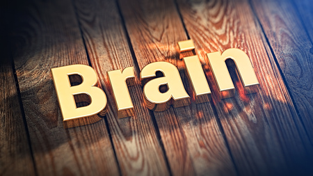 savvy: Use your brain and get rich. The word Brain is lined with gold letters on wooden planks. 3D illustration graphics