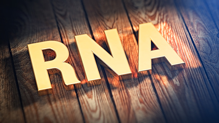 rna: The acronym RNA is lined with gold letters on wooden planks. 3D illustration image Stock Photo