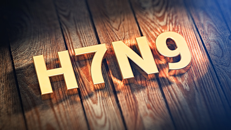 The acronym H7N9 is lined with gold letters on wooden planks. 3D illustration image Stock Photo