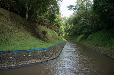 The river of small hydroelectric dam in tropical forest on Bali, Indonesia Фото со стока