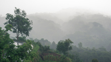 The turn of wet asphalt road above the ravine in the fog during the rain, Bali, Indonesia