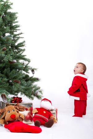 Fascinated Santa Baby boy standing next to Christmas tree. Studio shoot on white background. Stock Photo