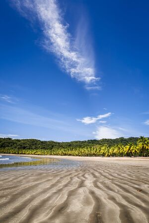 Beautiful landscape of sand beach and palm trees on the Carrillo beach, Costa Rica, Guanacaste. Stock Photo
