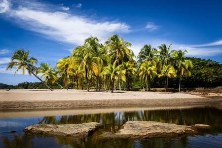 Palm trees and their reflecions in the water on the Carrillo beach, Guanacaste, Costa Rica
