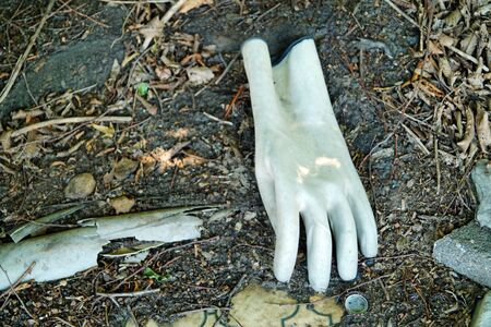 Photograph of a sinlge glove by the wayside 写真素材