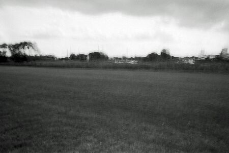 Blurred black and white portrait of a park on a summer day.