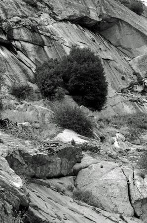 Analog black and white photography of a beautiful landscape with rocks and trees.