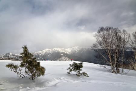 sakhalin: Ski resort on the island of Sakhalin